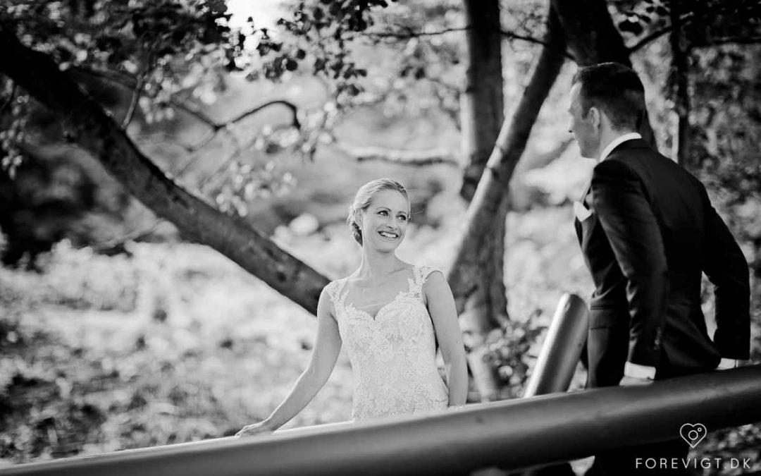 Bryllup - Tips til at planlægge dit bryllup på internettet
